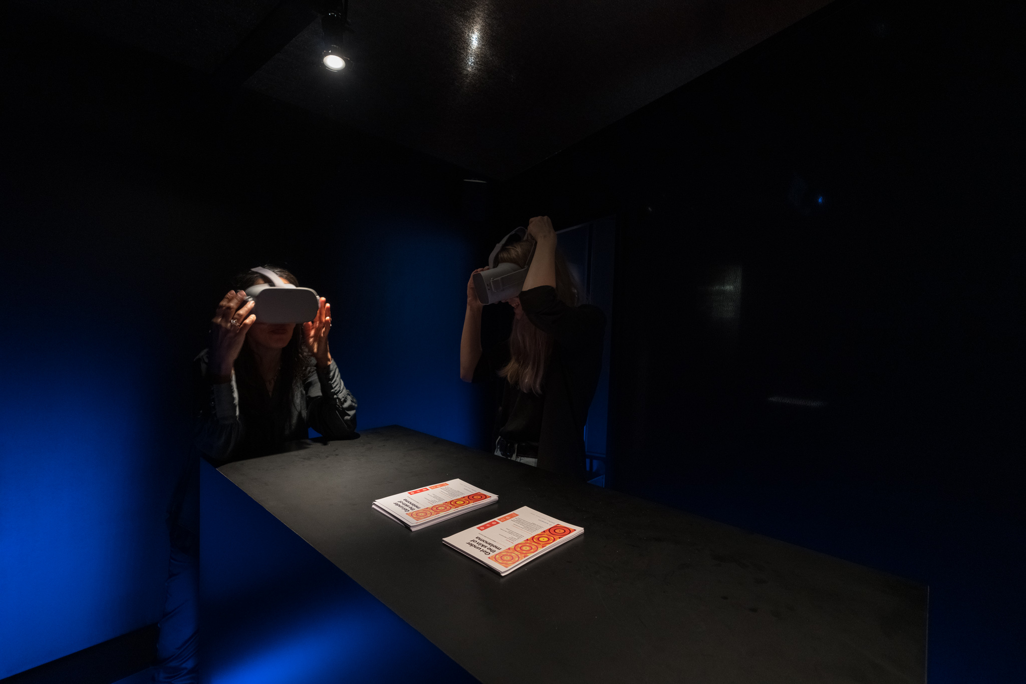 """Melanoma Revealed: A European Exhibit"" in Barcelona 8"